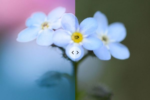 10 before and after photo edits – favorites from my   Instagram