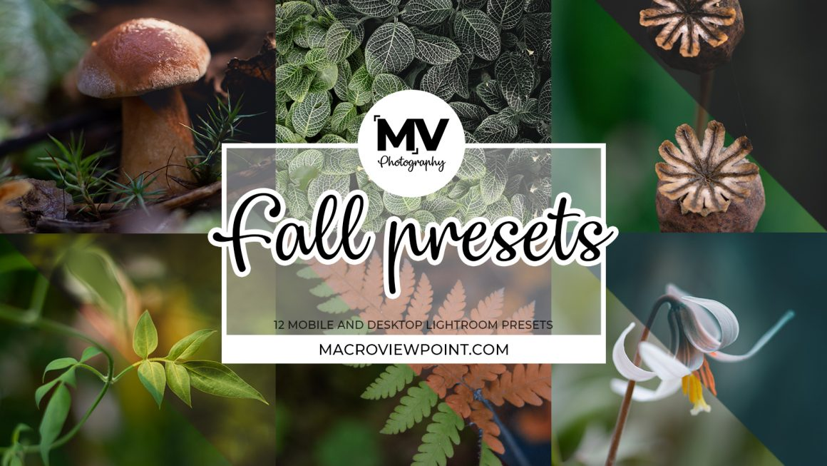 12 Adobe Lightroom Fall Presets for Macro and Nature Photographers (Mobile and Desktop)