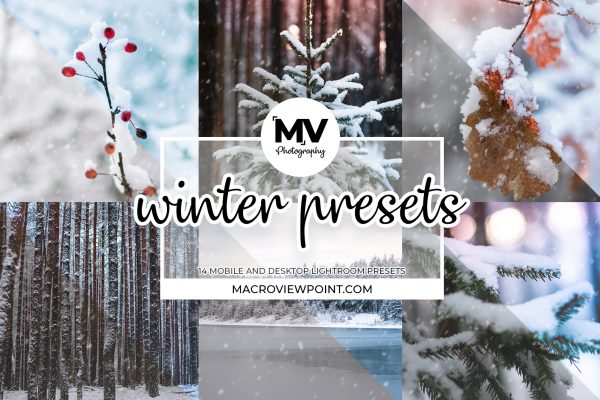 14 Adobe Lightroom Winter and Snow Presets for Macro and Nature Photos (Mobile and Desktop)